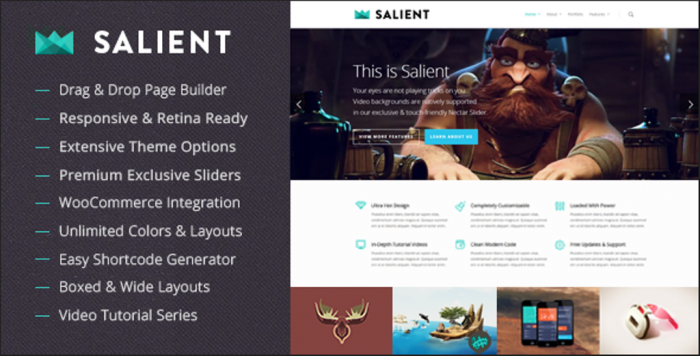 Salient-Responsive-Multi-Purpose-Theme Top 10 ThemeForest WordPress Themes