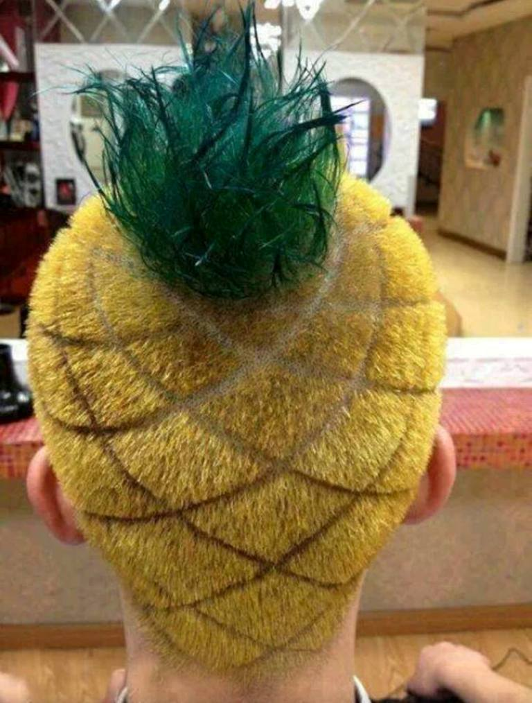 1098186_507931005948208_712224314_n 25 Funny and Crazy Hairstyles to Change Yours