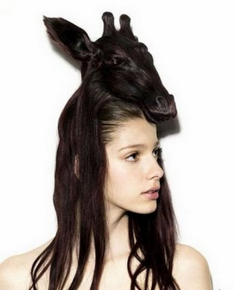 funny-animal-hairstyles-12 25 Funny and Crazy Hairstyles to Change Yours