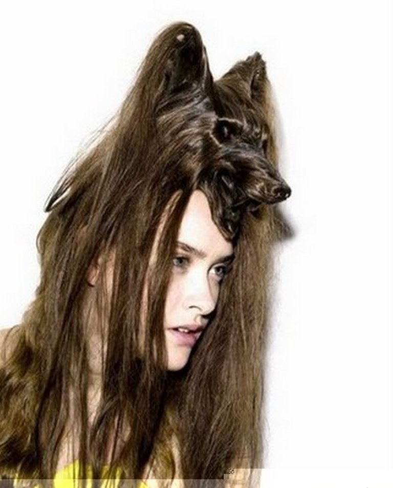 weird-creative-038-funny-animal-hairstyles14-1297854883 25 Funny and Crazy Hairstyles to Change Yours