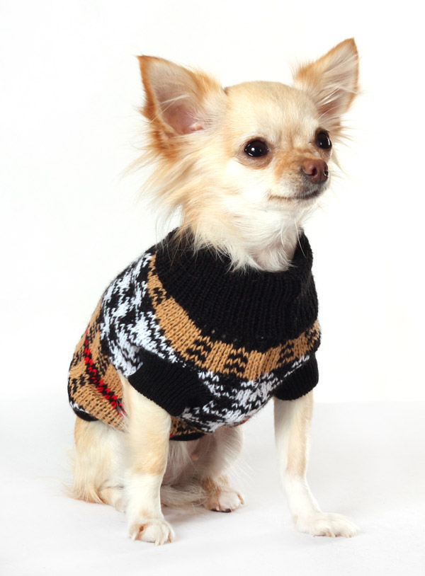 1196_1 Top 35 Winter Clothes for Dogs