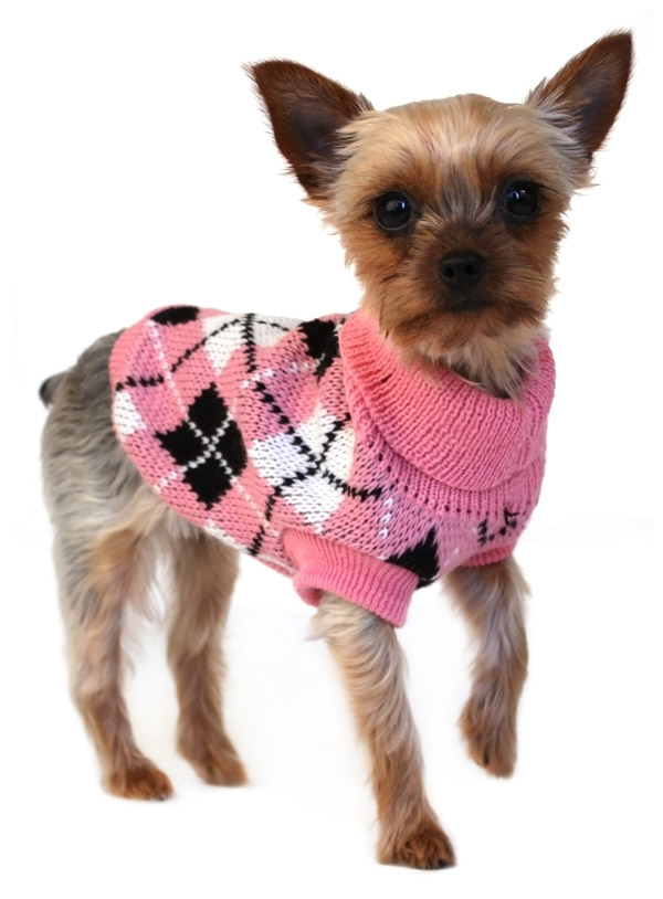 459_21 Top 35 Winter Clothes for Dogs