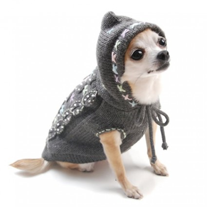 CableKnitSweater Top 35 Winter Clothes for Dogs