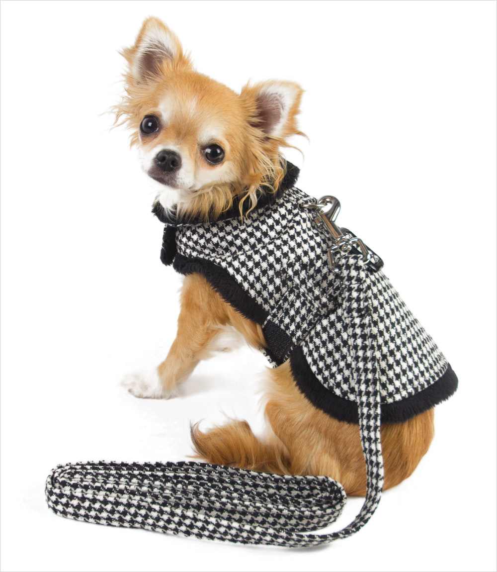 DD_MnkyJktHndstoothDog_pu Top 35 Winter Clothes for Dogs
