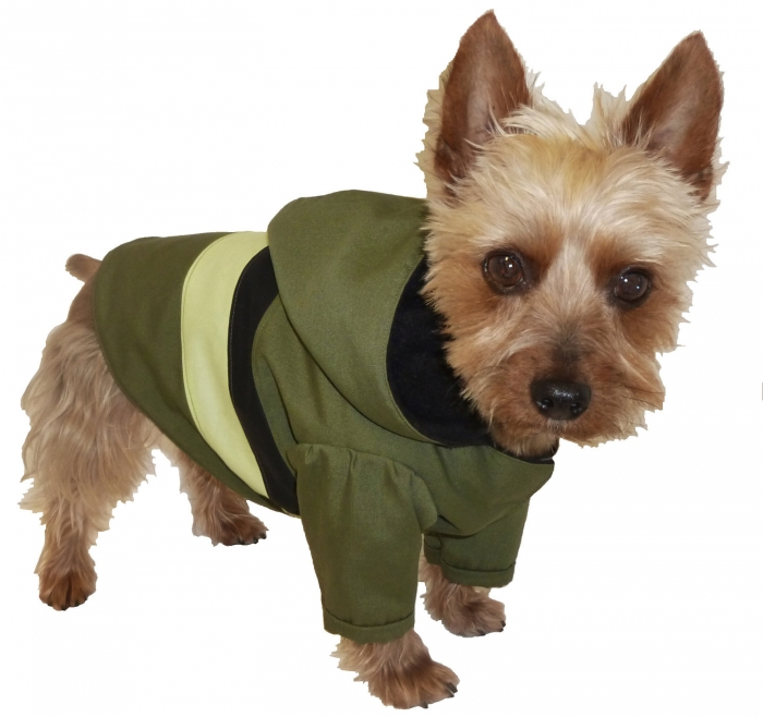 Dog-Coats-for-Winter Outdoor Corporate Events and The Importance of Having Canopy Tents