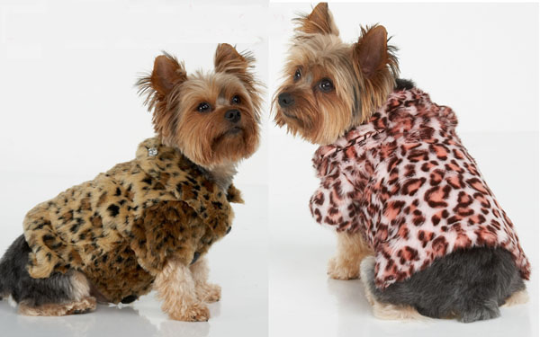 Dog-Winter-Coats Top 35 Winter Clothes for Dogs