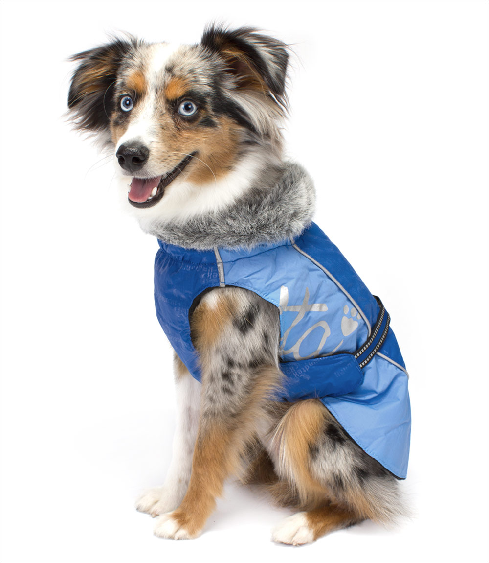Hurtta-Blue-Winter-Jacket-Dog_pu Top 35 Winter Clothes for Dogs