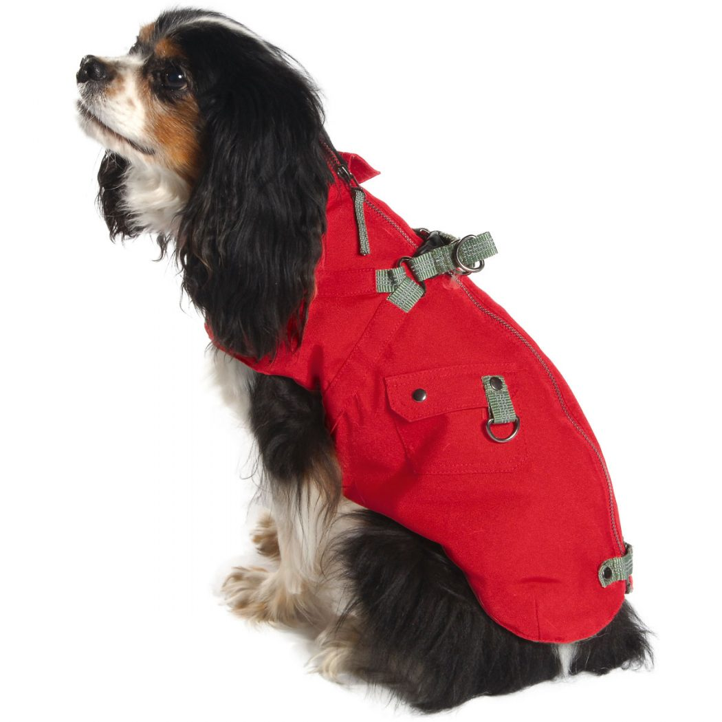 MTCOMP-rouge-portÇ__02084_zoom Top 35 Winter Clothes for Dogs