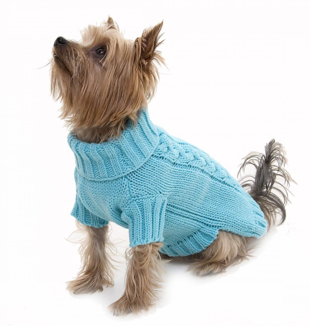 Turquoisecablejumperfullscreen Top 35 Winter Clothes for Dogs