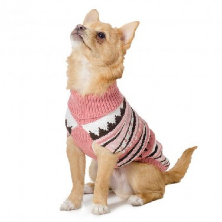 ancol_alpine_knit_pint_dog_jumper Top 35 Winter Clothes for Dogs