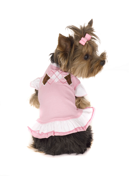 hglargyle-1 Top 35 Winter Clothes for Dogs