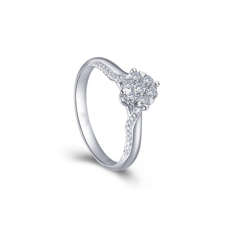 luxurious-cluster-halo-diamond-engagement-ring-for-women. Cluster Engagement Rings for Those who Are on a Budget