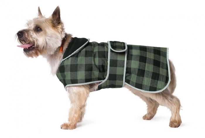 moorland-dog-coat Top 35 Winter Clothes for Dogs