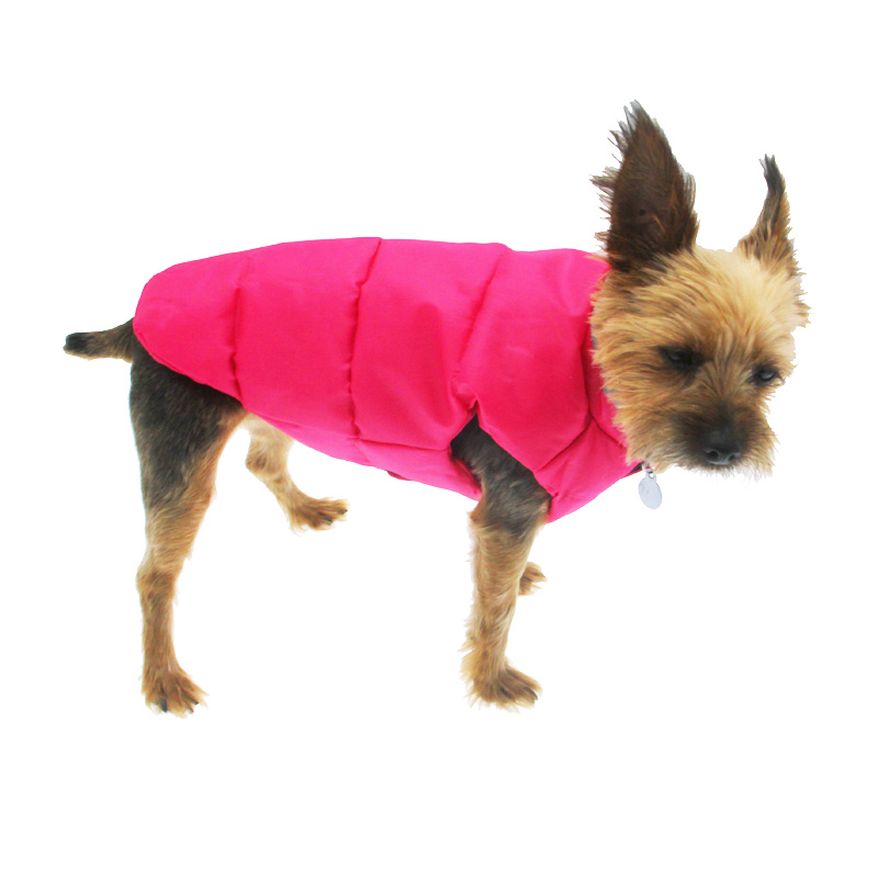north-paw-vibrant-puffy-dog-vest-pink-1 Top 35 Winter Clothes for Dogs