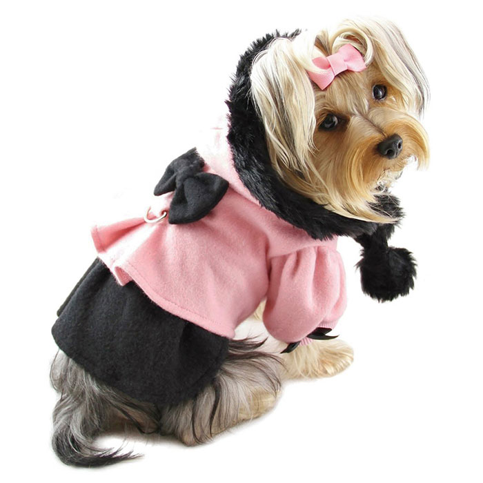 princess_dress_coat_with_hood Top 35 Winter Clothes for Dogs