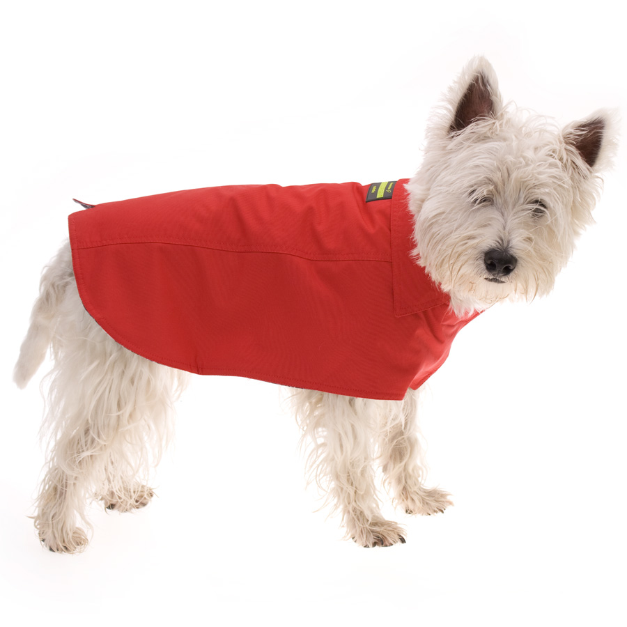 red_coat900__78903_zoom Top 35 Winter Clothes for Dogs