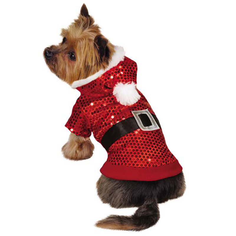 xm6638 Top 35 Winter Clothes for Dogs