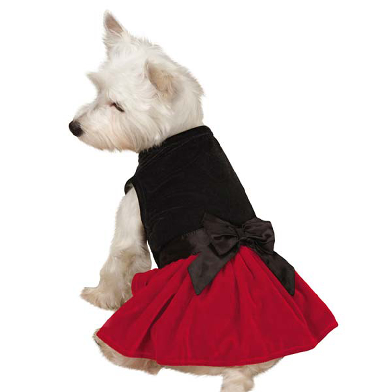 zack-zoey-velvet-bow-dog-dress-1 Top 35 Winter Clothes for Dogs