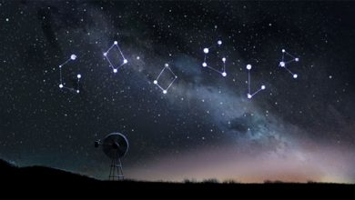 Photo of Top 4 Facts about the Perseid Meteor Shower