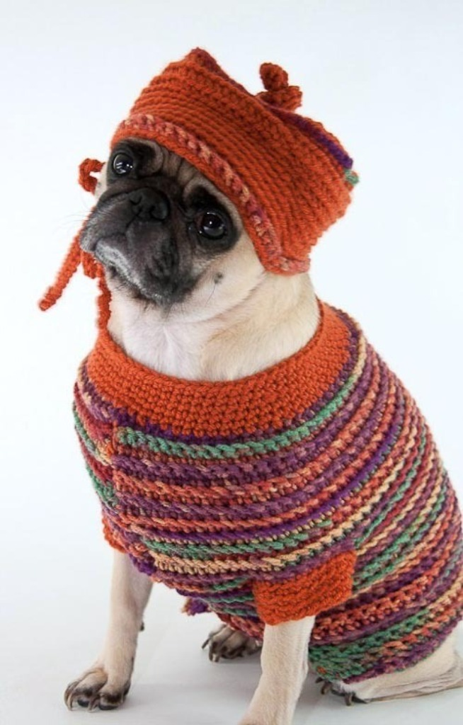05044eb218cec9b09998bb82e059eafe.600x Top 25 Breathtaking Dog Sweaters for Your Dog
