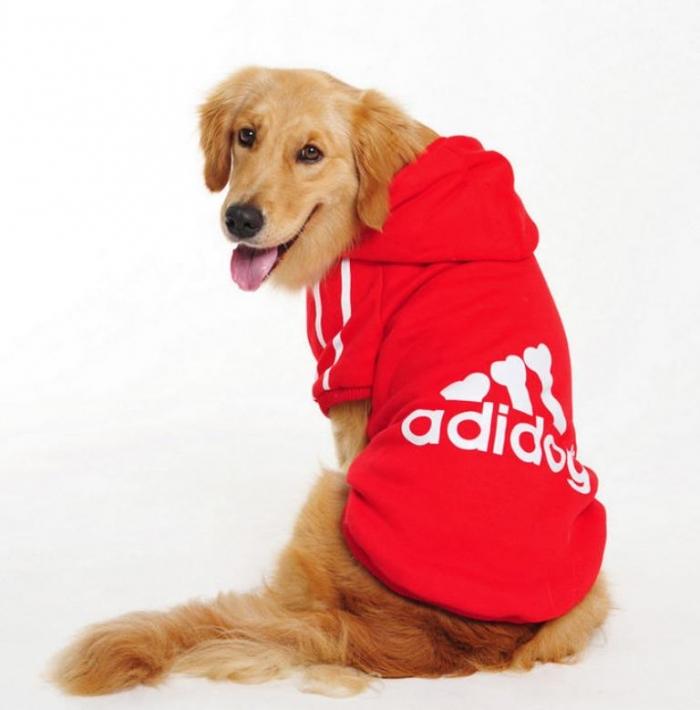 2013-newest-winter-font-b-dog-b-font-clothes-font-b-big-b-font-font-b Top 25 Breathtaking Dog Sweaters for Your Dog