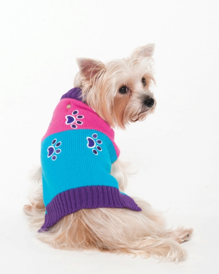 FOUR-PAWS-CREWNECK-SWEATER-TURQ_660204014663 Top 25 Breathtaking Dog Sweaters for Your Dog