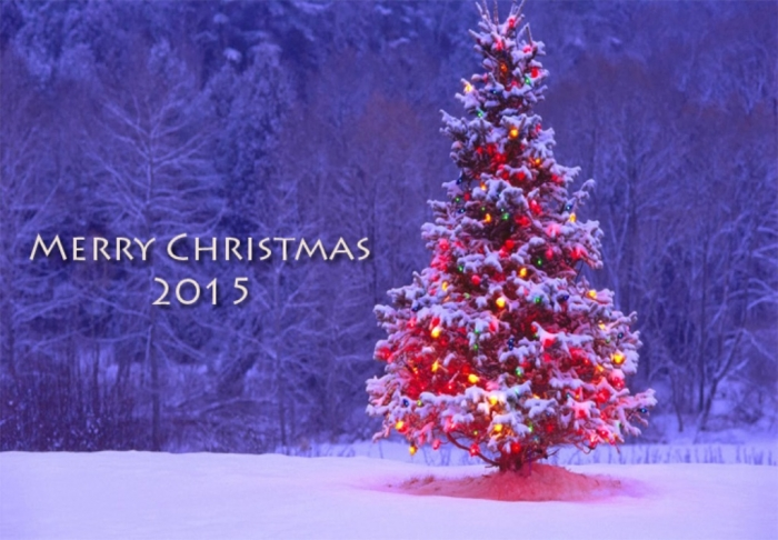 Merry-christmas-2015 Best 20 Merry Christmas Greeting Cards ... [Exclusive Designs]
