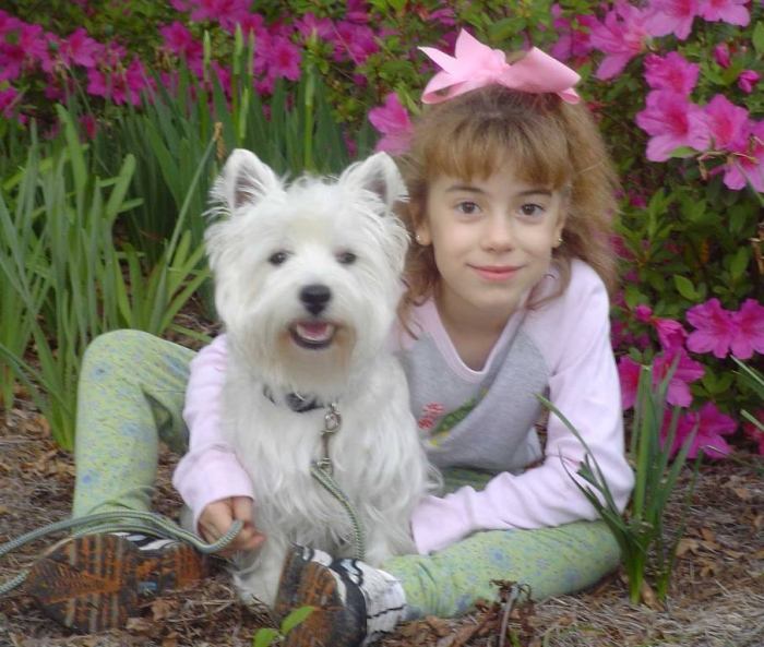 MontanaDarby2584W 5 Most Hidden Facts About Westie Puppies ... [Exclusive]