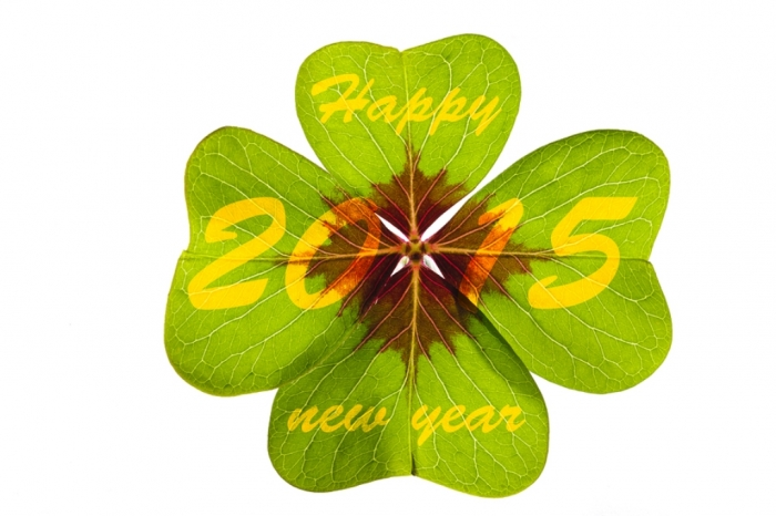 New-Year-Wishes-Quotes-2015-1 Best 25 Happy New Year Greeting Cards