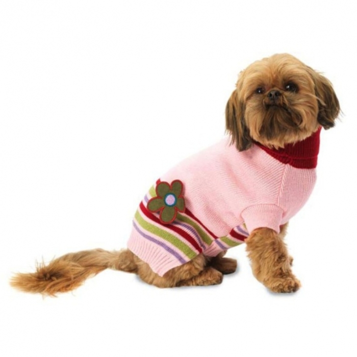 PetRageous-Designs-Aj's-Applique-Dog-Sweater Top 25 Breathtaking Dog Sweaters for Your Dog
