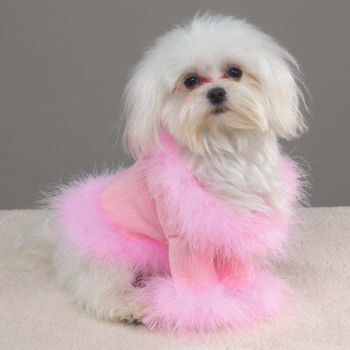 PUTTIN На блеска свитер собаки