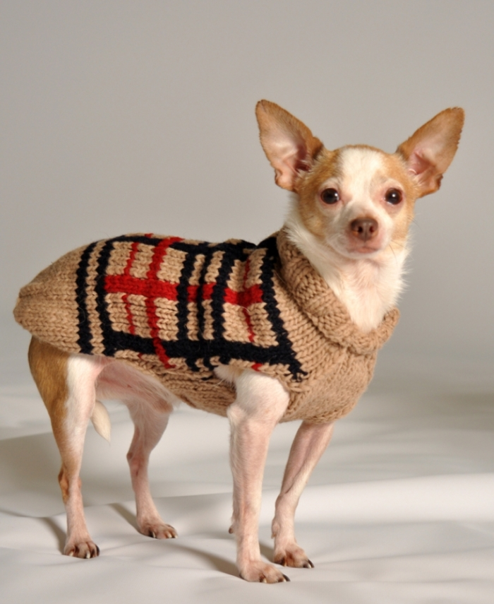 TAN-PLAID Top 25 Breathtaking Dog Sweaters for Your Dog