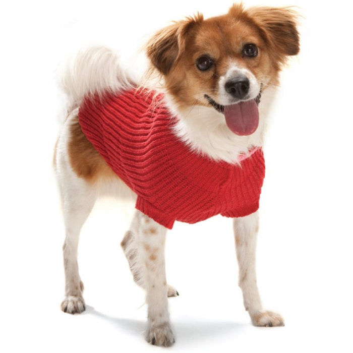 WPDC00006A_dt Top 25 Breathtaking Dog Sweaters for Your Dog