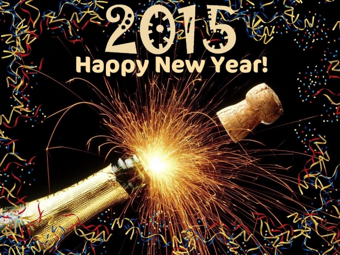 funny-New_Year_resolutoins-2015 Best 25 Happy New Year Greeting Cards