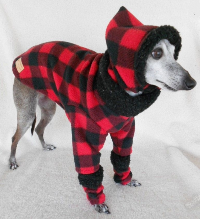 il_fullxfull.280793295_grande Top 25 Breathtaking Dog Sweaters for Your Dog