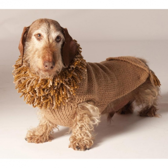 lion_img Top 25 Breathtaking Dog Sweaters for Your Dog