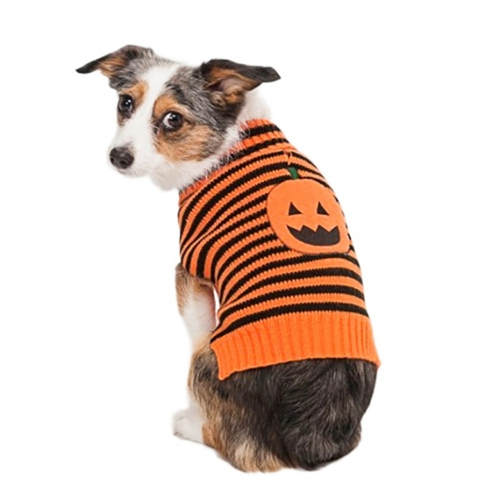 lookin-good-striped-pumpkin-dog-sweater Top 25 Breathtaking Dog Sweaters for Your Dog