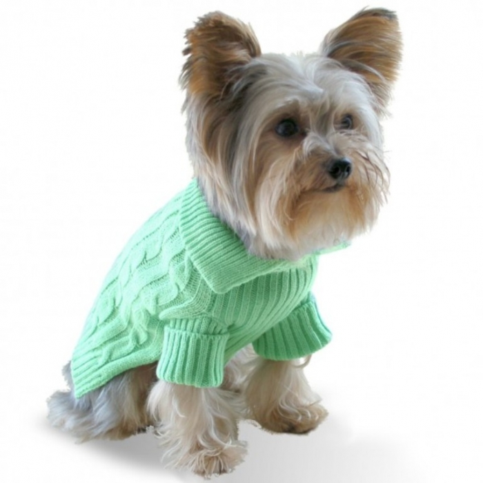 pistachio-green-dog-aran-sweater Top 25 Breathtaking Dog Sweaters for Your Dog