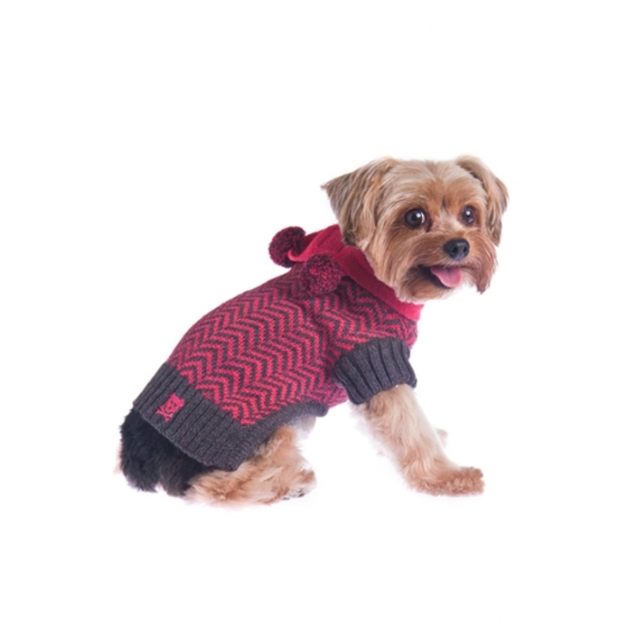 varsity-girl-dog-sweater-with-scarf-1 Top 25 Breathtaking Dog Sweaters for Your Dog