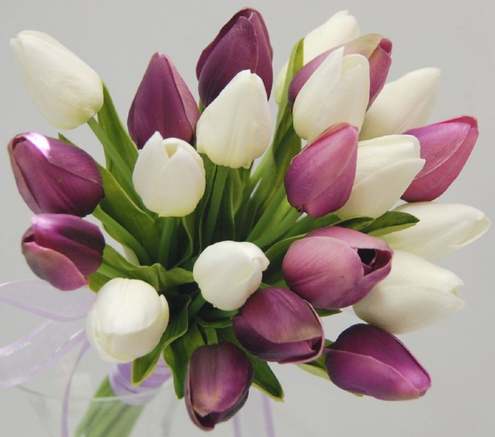 1000x1000 How to Increase the Beauty of White Tulip Flowers