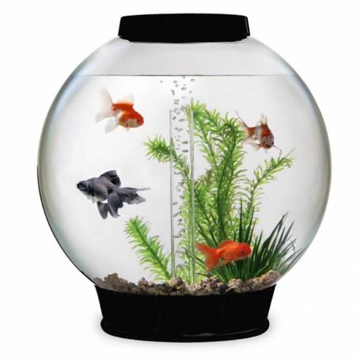 10_Biorb_30_Black How to Decorate Your Boring Fish Tank