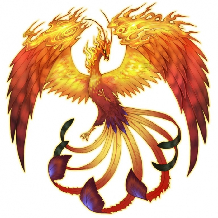 1178368-ss2_phoenix New Facts You Don't Know about the Legend of the Phoenix