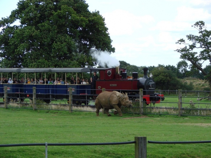 13326435 What Whipsnade Zoo Leaves Its Animals to Do!