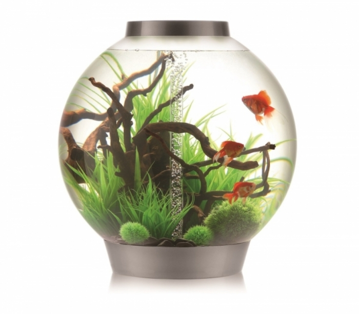 420 How to Decorate Your Boring Fish Tank