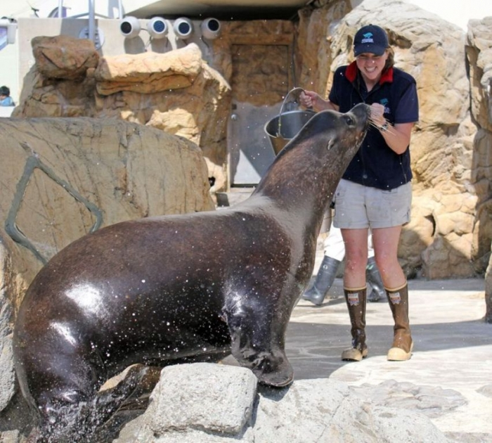 """Big_Parker_and_Megan_770_694_80auto_c1_c_c_0_0_1 Is It """"Sea Lions Or Sea Bears"""" You Have to Decide"""