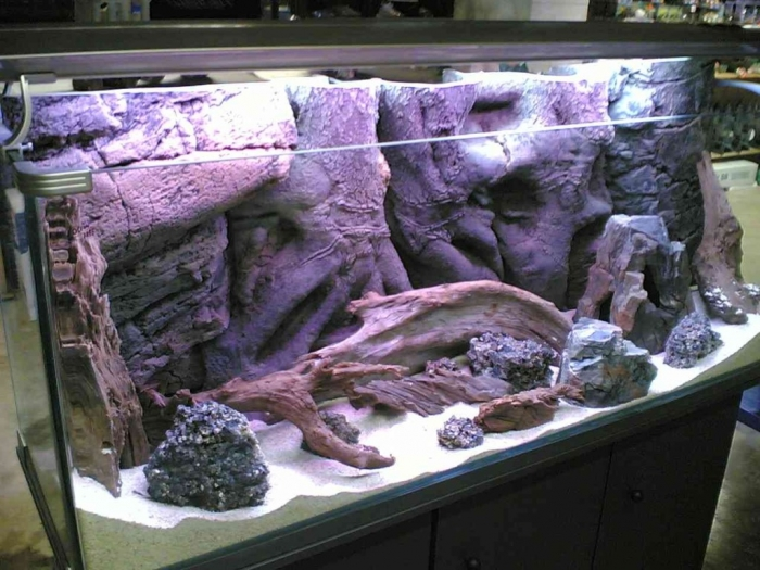 Decorate-Your-Aquarium-As-Per-Your-Taste How to Decorate Your Boring Fish Tank