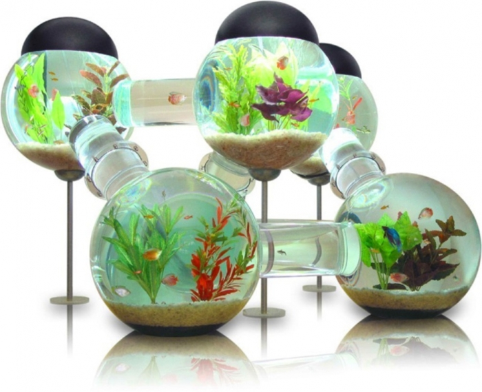 Fish-Tank-Decoration-Ideas How to Decorate Your Boring Fish Tank