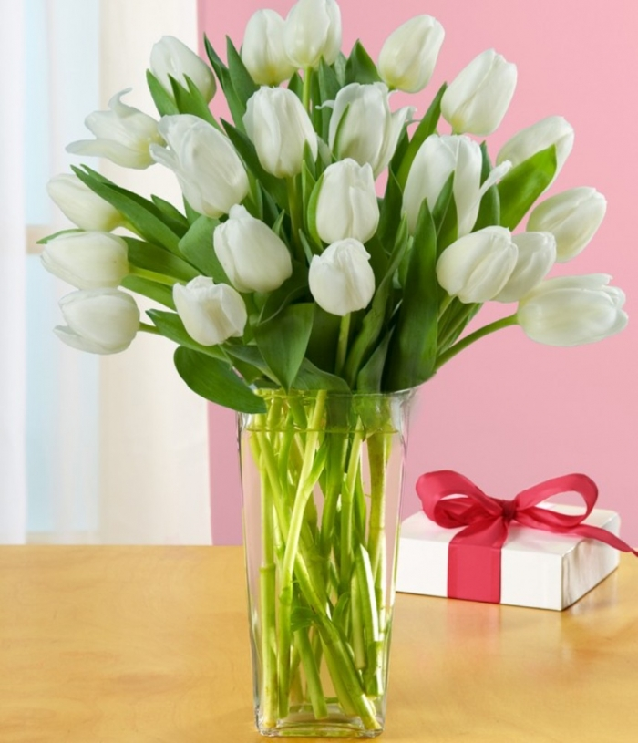 PF_13_0000000T1520_VA0606_W1_PF How to Increase the Beauty of White Tulip Flowers