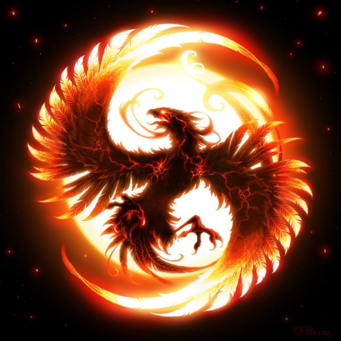 Phoenix-1 New Facts You Don't Know about the Legend of the Phoenix