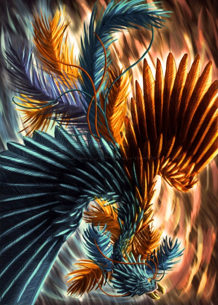 Phoenix_Bird_by_o_eternal_o New Facts You Don't Know about the Legend of the Phoenix